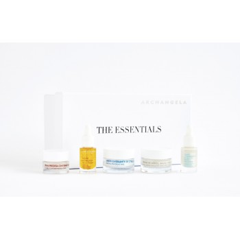 THE ESSENTIALS TRAVEL SET